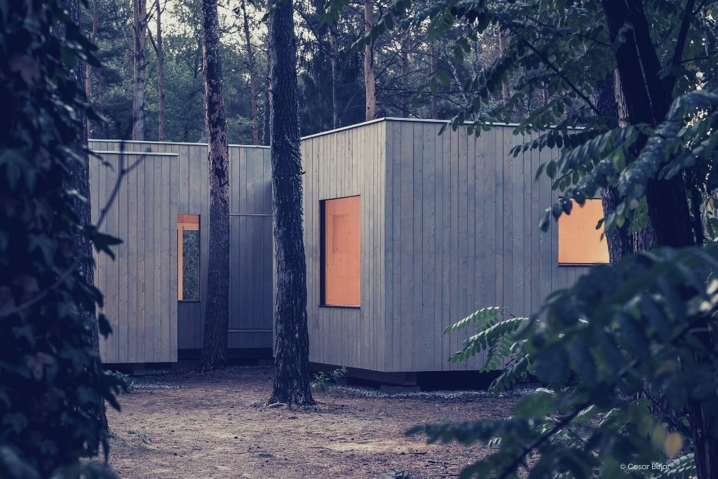 Housing, Building, Nature, sensitive habitat