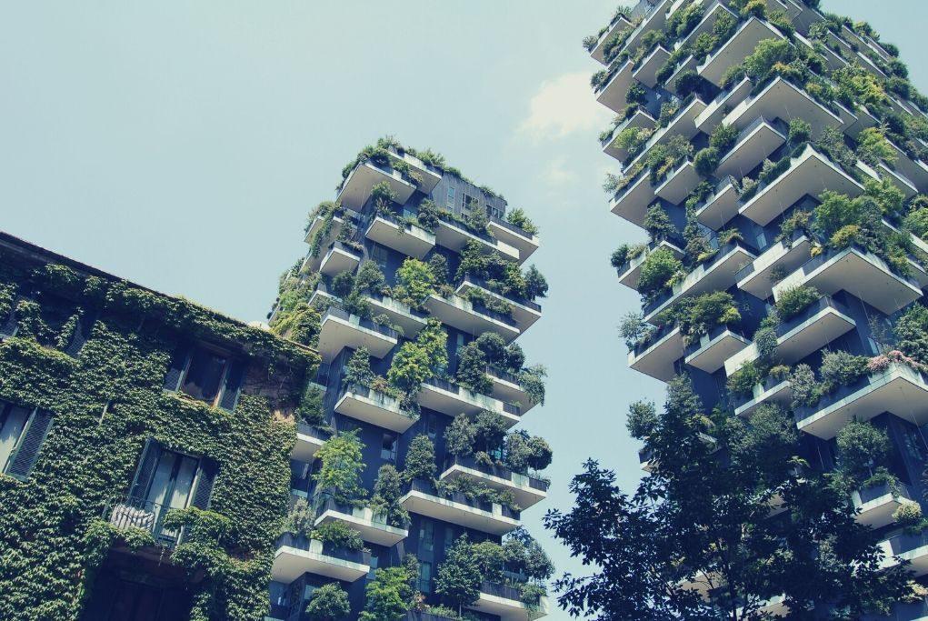 Urban, Building, High Rise