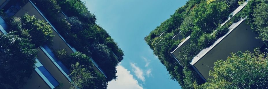 construction à énergie nette zéro