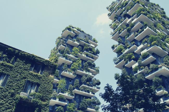 Image de bâtiments verts