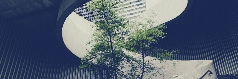 Biodiversità nell'edilizia